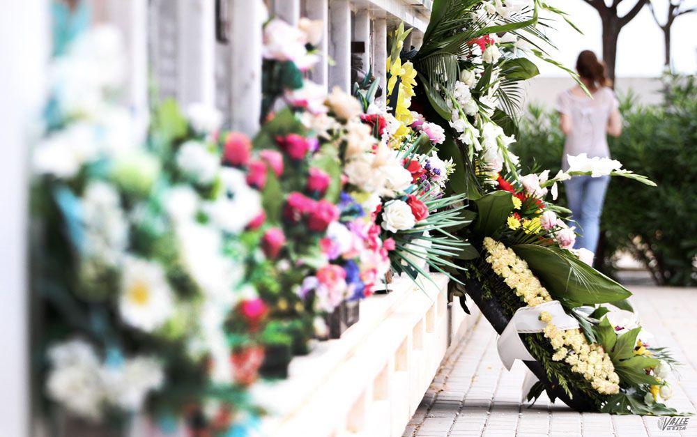 Denuncian el robo de flores en el cementerio Virgen de los Dolores ...